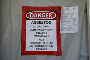 Asbestos Survey and Abatement – Shopping Center in North Palm Beach, Florida